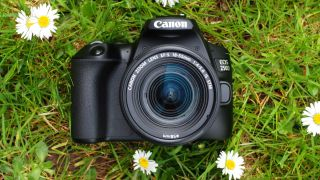 Cheap Canon camera deals