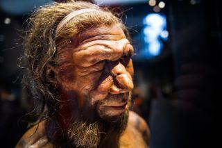 Neanderthal man