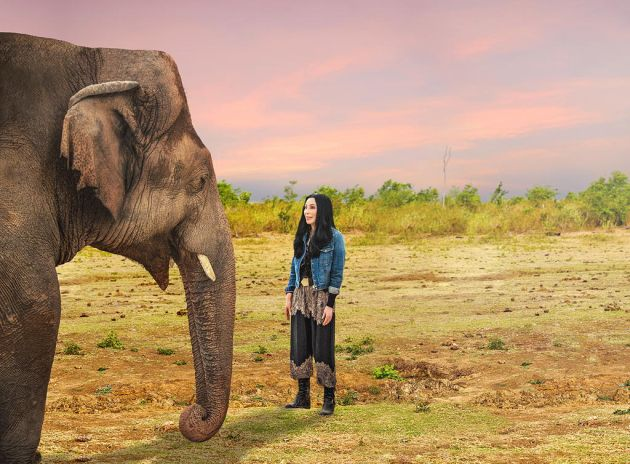 TV tonight Cher & the Loneliest Elephant