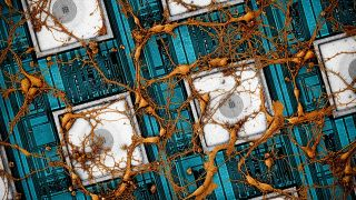 Here's an image Samsung has put together of rat neurons on CNEA (CMOS nanoelectrode array).