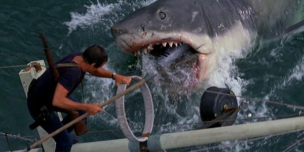 jaws steven spielberg shark roy scheider