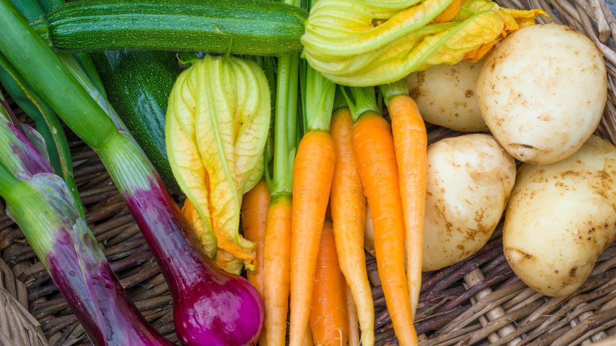 Martha Stewart warns that bolting vegetables can ruin your kitchen garden – and how to spot the signs