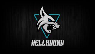 PowerColor Hellhound AMD Radeon RX 6700 XT GPU skjermkort