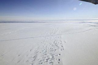 Antarctica Pine Island Glacier