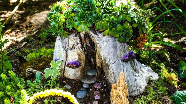 tree stump ideas: fairy house