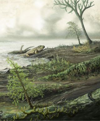 Early life as it is believed to have looked 335 million years ago.