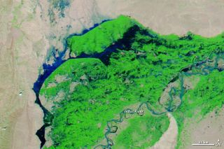 Flooding in Pakistan on Sept. 21, 2012.