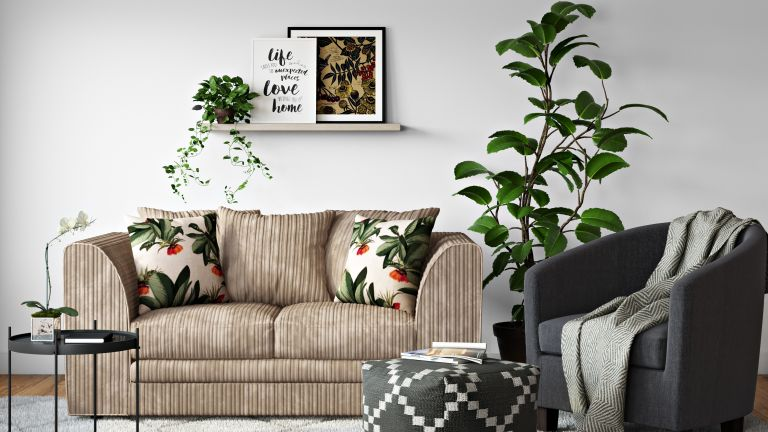 Wayfair rug in living room decor with plants