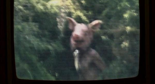piggy piggy american horror story