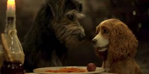Lady And The Tramp's Justin Theroux Is Having Candle-Lit Dinners With His Dog During Quarantine