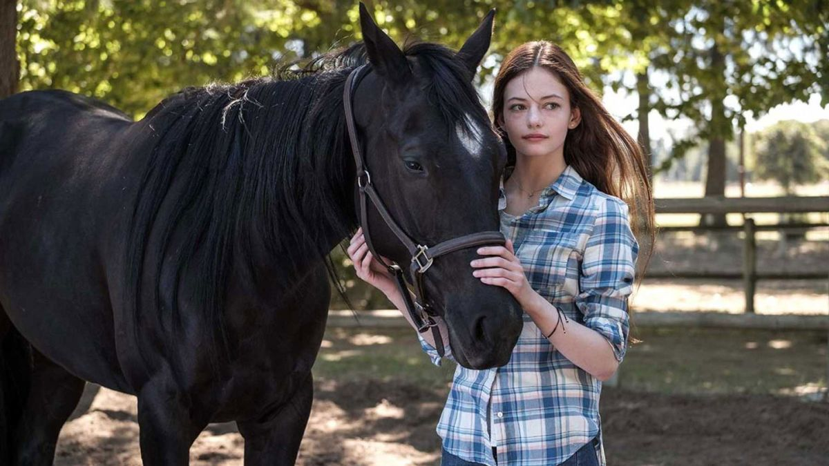 How to watch Black Beauty on Disney Plus: Release date, trailer and cast