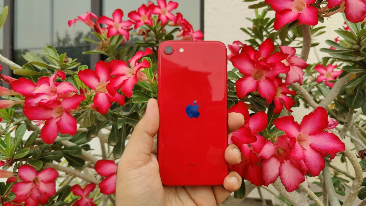 No Pixel 4a release date? Google, you're ceding a major win to iPhone SE 2020 - TechRadar South Africa