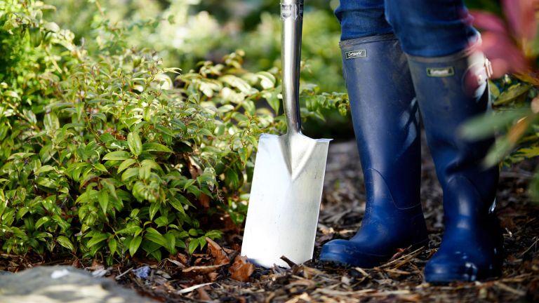 no dig gardening method