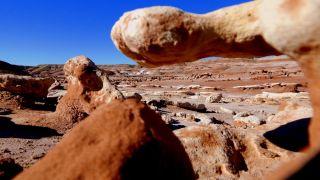 Utah desert - mdrs research
