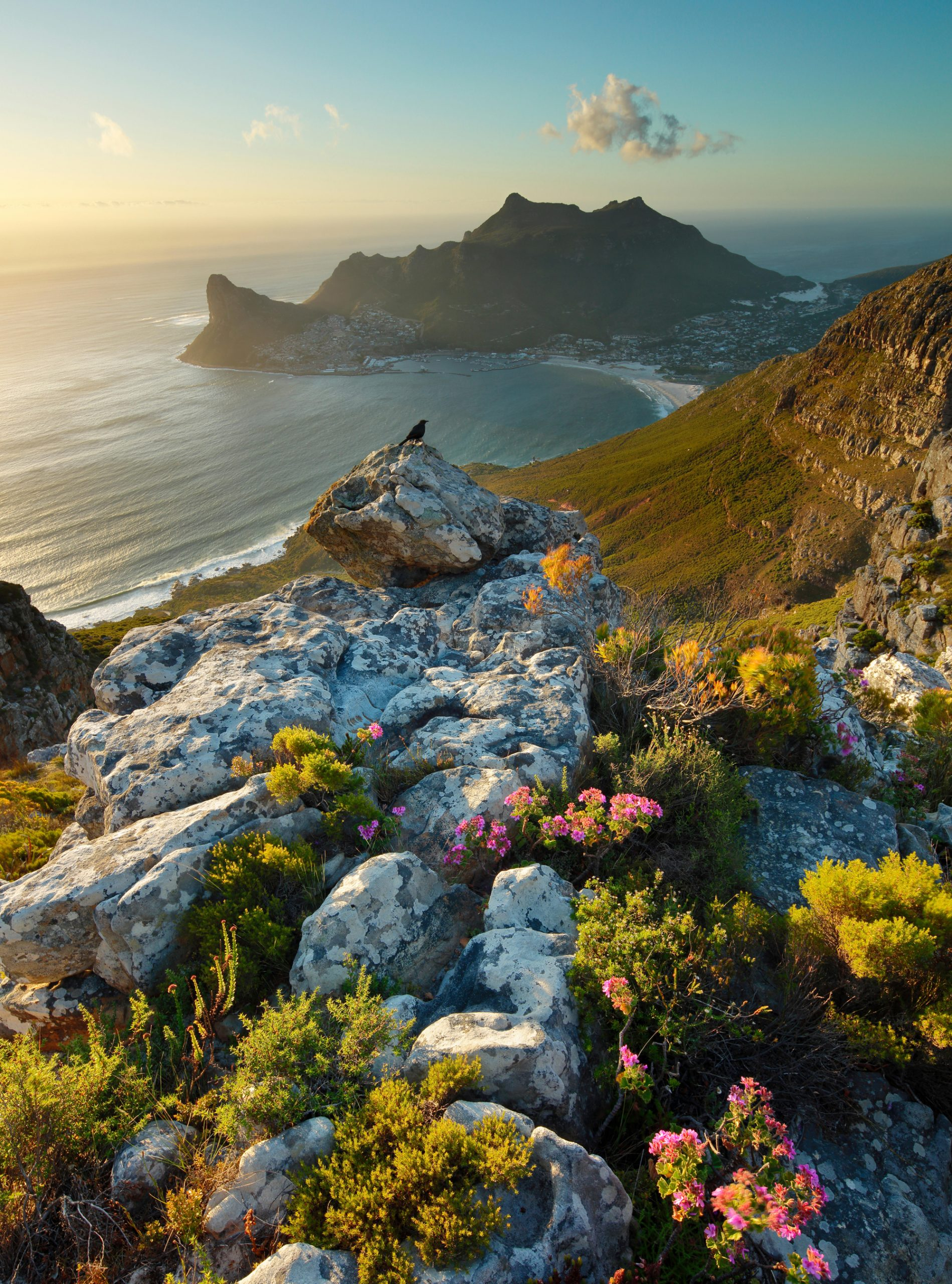 things to do in south africa holidays