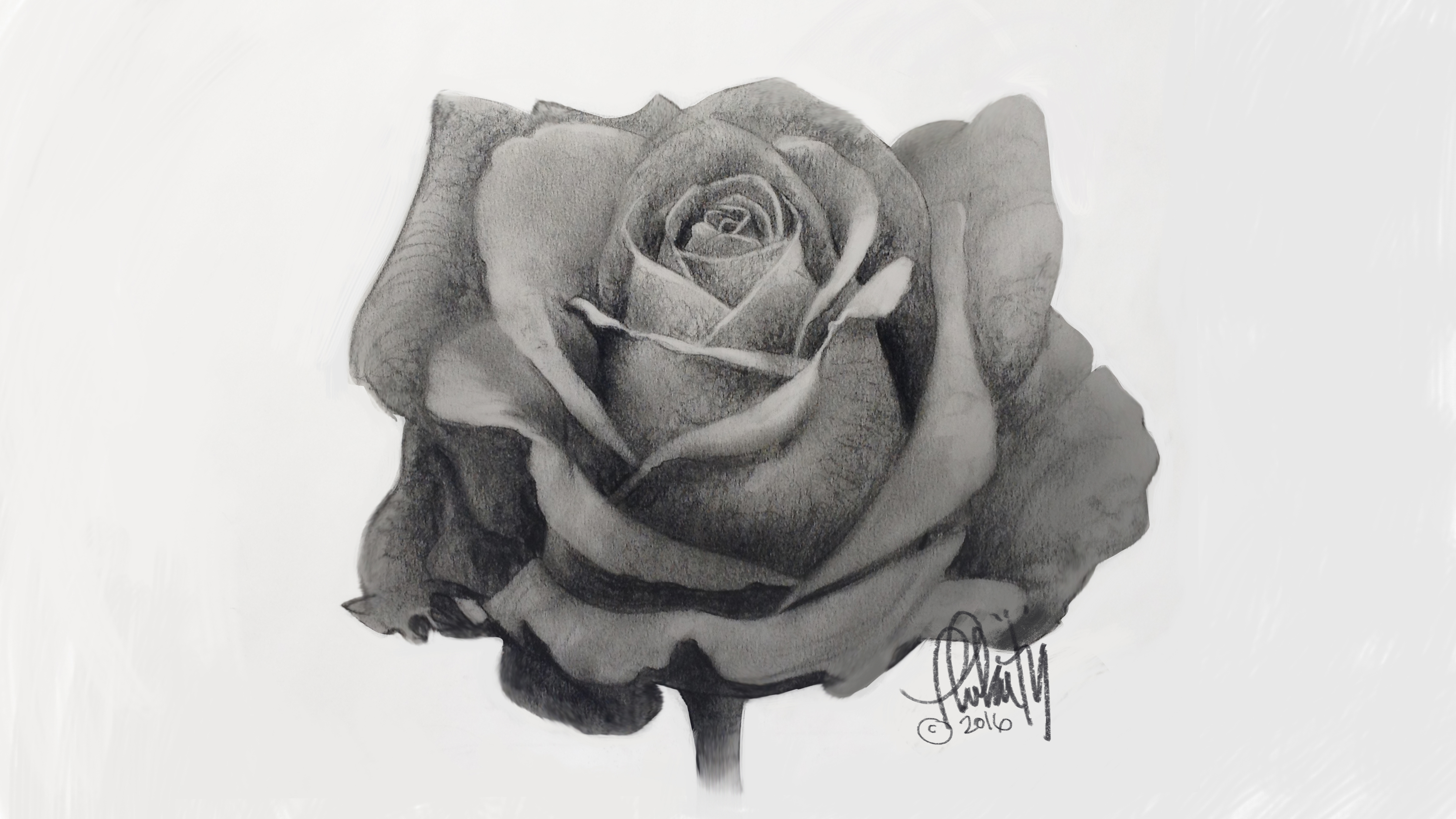 How To Draw A Rose Beginner And Advanced Tips Creative Bloq