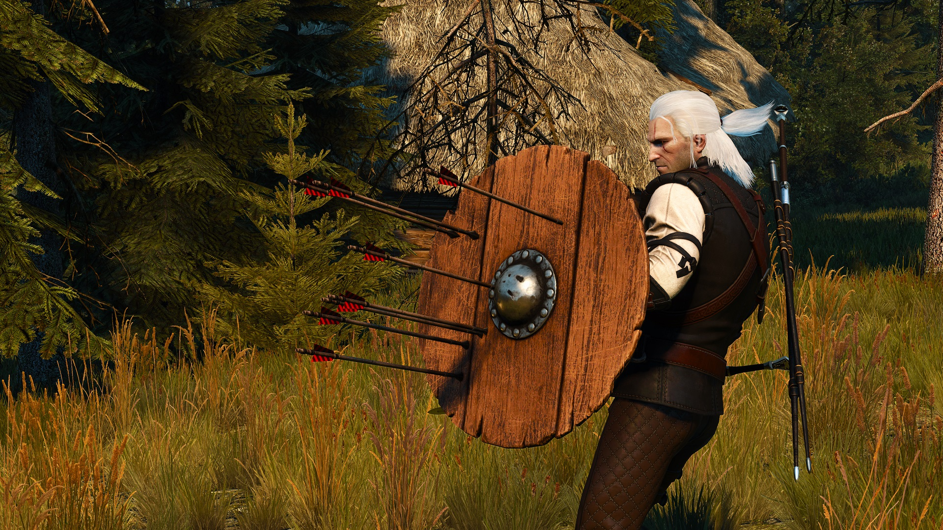 Mod for The Witcher 3 lets Geralt use shields | PC Gamer