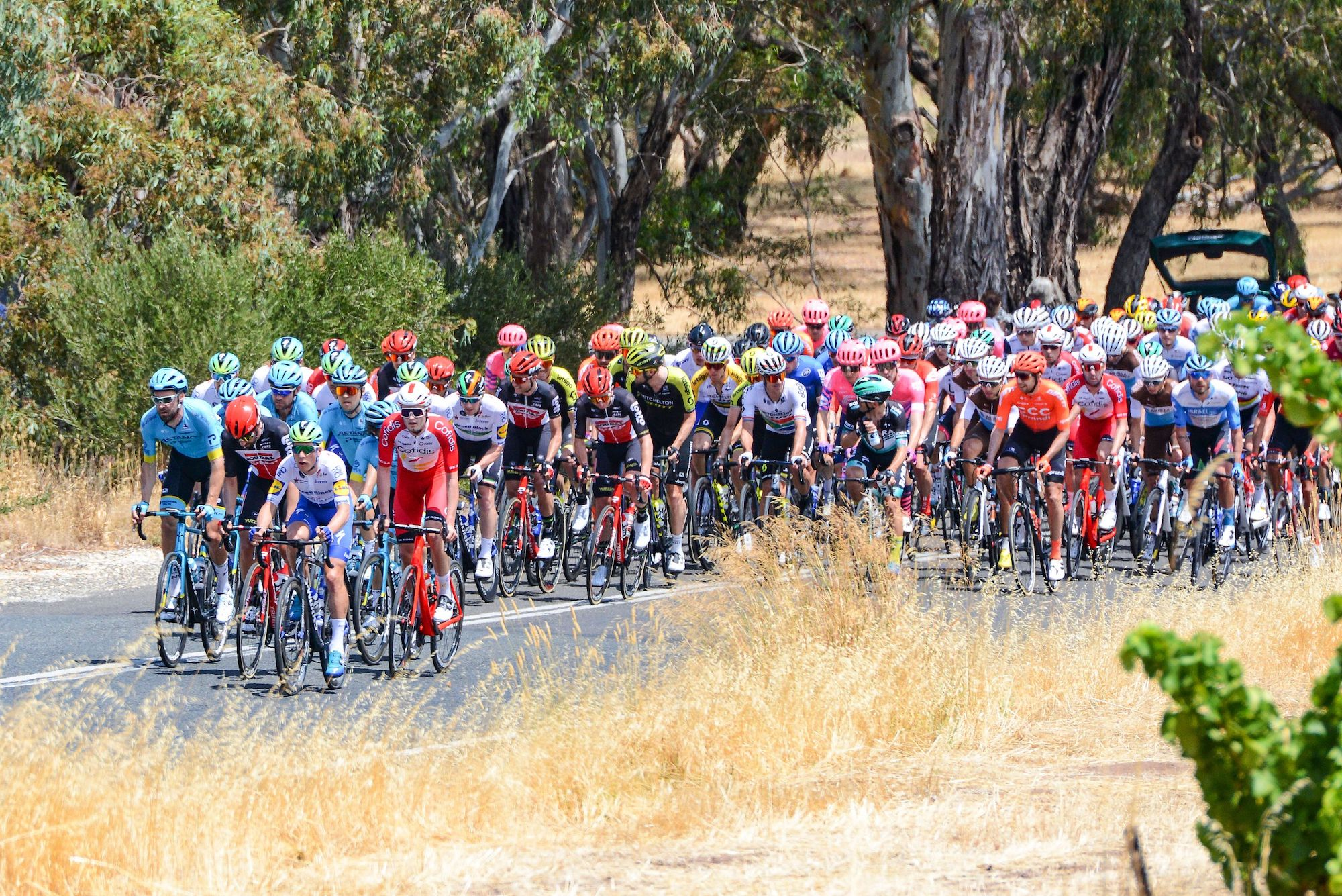 Watch: Tour Down Under 2020 stage one highlights