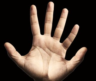 If our hands had six fingers, math might be easier.