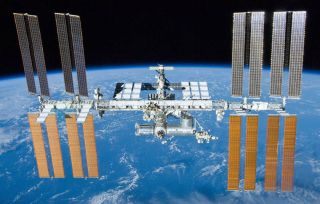 Astronauts aren't the only things that thrive on the International Space Station. Bacteria do well there, too, a new study finds.