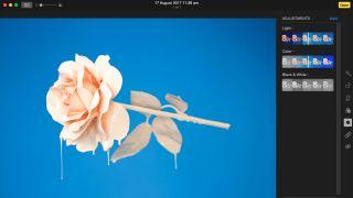 The best free Mac photo editor 2019