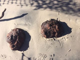 Civil War Cannonballs from hurricane