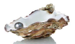 black-pearl-101115-02
