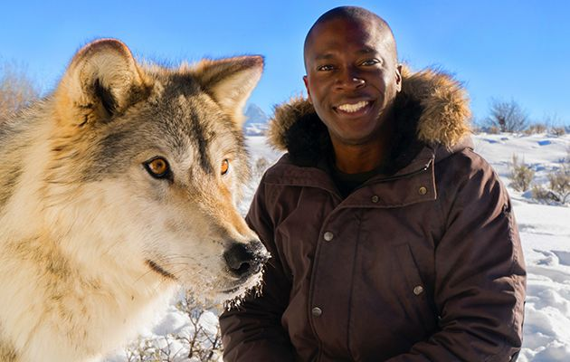 Presenter Patrick Aryee heads to the Americas to show what a versatile and well-adapted family canines are.