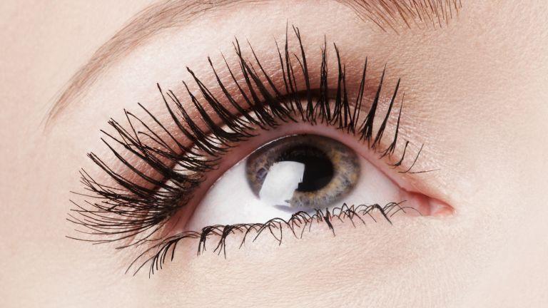 close up of eyelashes