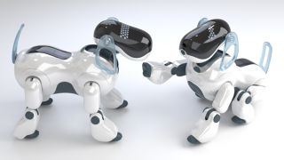 Sony could be just about to announce a new robot dog with