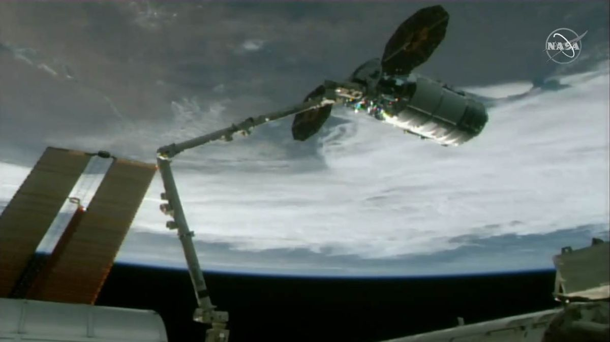 Cygnus cargo ship delivers cheese, candy and science gear to space station astronauts
