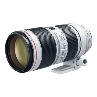 No need for Black Friday! Pick up a Canon 70-200mm f/2.8 lens with £220 cashback! | Digital Camera World