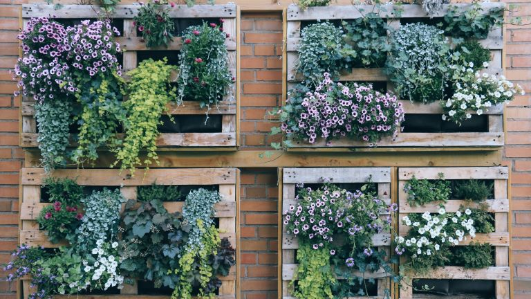Self-watering vertical gardens