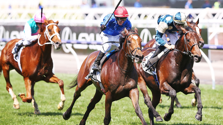 btc horse race live
