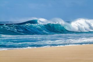 A large beach wave.