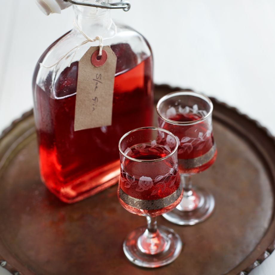 Sloe Gin-food-alcohol-woman and home