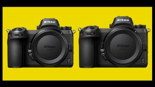 Nikon Z5 and Nikon Z9 to be announced this year?