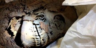 Researchers took skin samples from this ancient Egyptian mummy stored in the Egyptian Museum in Turin, Italy.