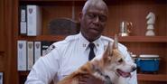 Brooklyn Nine-Nine's Adorable Dog Who Played Cheddar Has Died