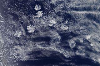 An instrument on NASA's Aqua satellite captured this image of actinoform clouds form near Australia on Jan.29..