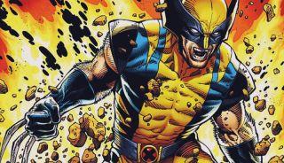 All Marvel Wolverines