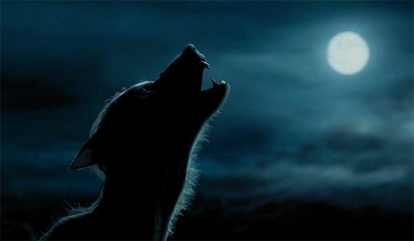 Remus Lupin as a werewolf