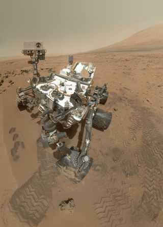 curiosity self portrait hi res