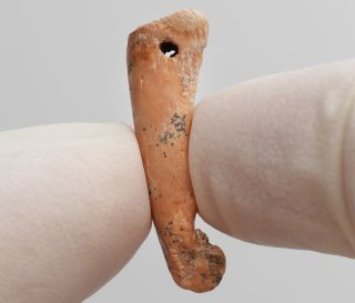Dated to between 26,000 to 22,000 years ago, this artifact, made from the bone of a bear cuscus, was likely worn as a pendant on the Indonesian island of Sulawesi where it was found.
