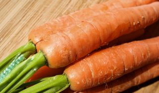 carrots, health, urban garden hazards