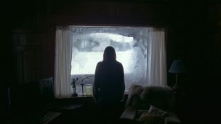 A person with their back to the camera stands in shadow in front of a window in The Lodge