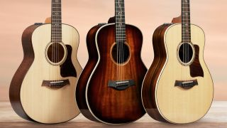 Taylor GT 811e and GT K21e
