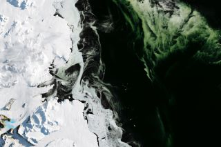 An imager on the Landsat 8 satellite captured this image, on March 5, 2017, of Antarctica's Granite Harbor, a cove near the Ross Sea, where the sea ice has a green hue due to a bloom of phytoplankton.