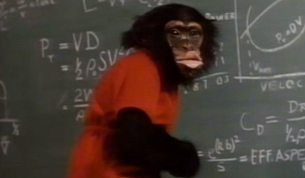 Stanley The Monkey's Uncle