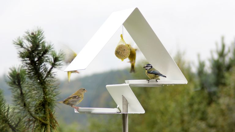The best bird feeder: contemporary bird feeder from OPOSSUM design